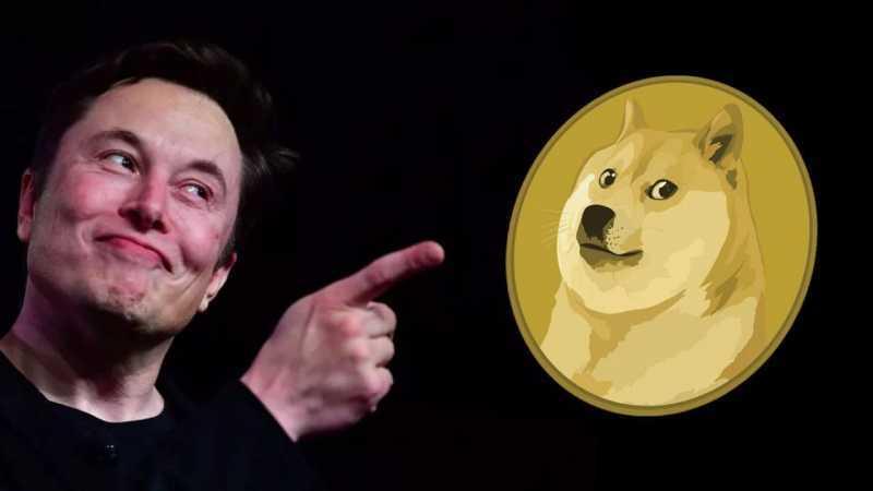 Elonovi Muskovi sa Dogecoin páči.